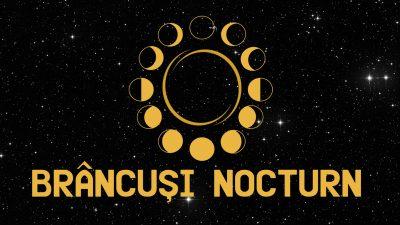 Proiecțiile Docuart la Târgu-Jiu: Nocturne de film în aer liber dedicate lui Brâncuși